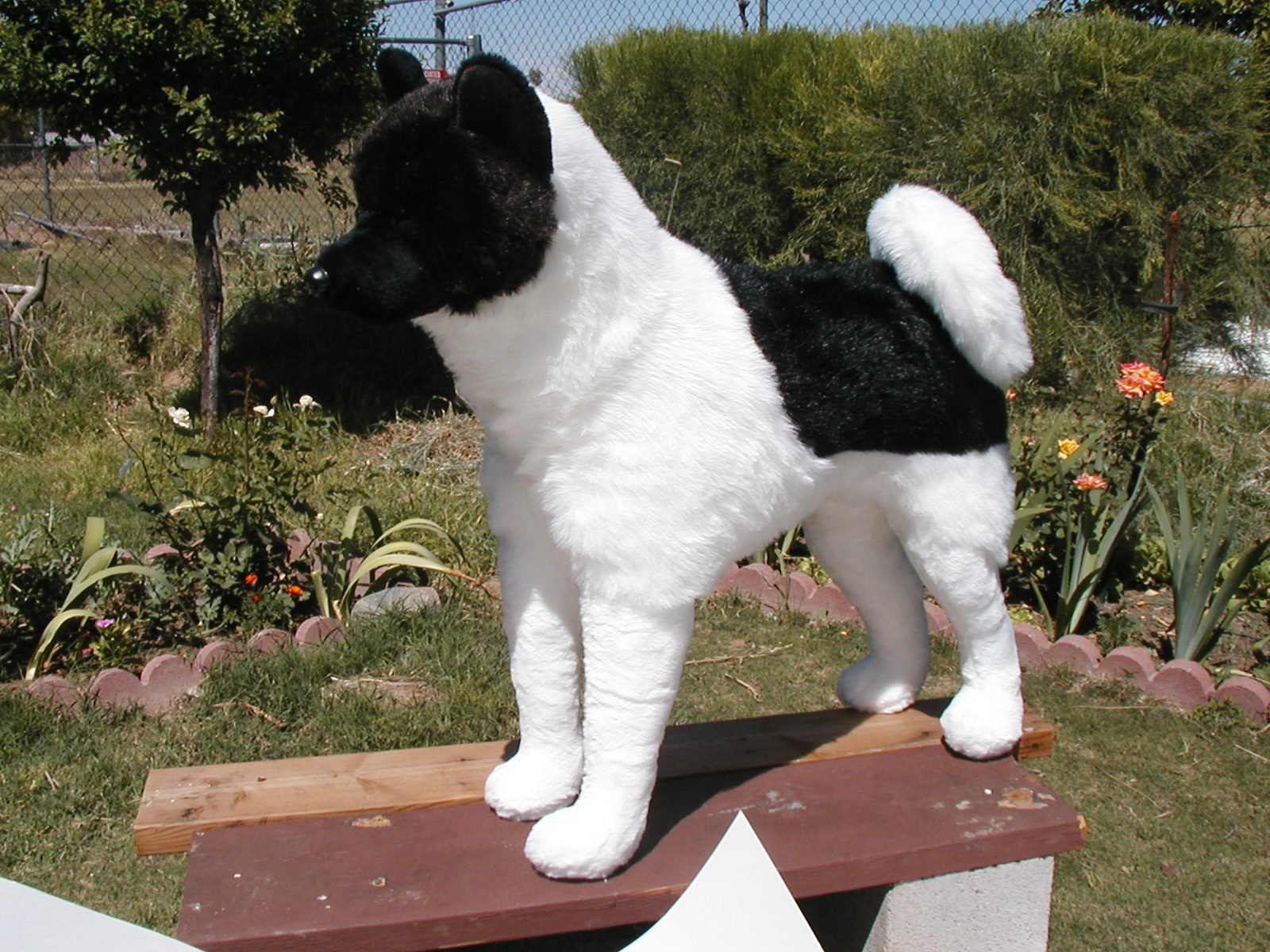 auction item 2 stuffed akita 26 full size donor in